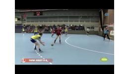 Embedded thumbnail for DHW vs Sint Truiden met goals , goals en...Goals